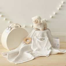 New Baby Bundle Shower Gift