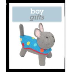 Boy Gifts (under $100)
